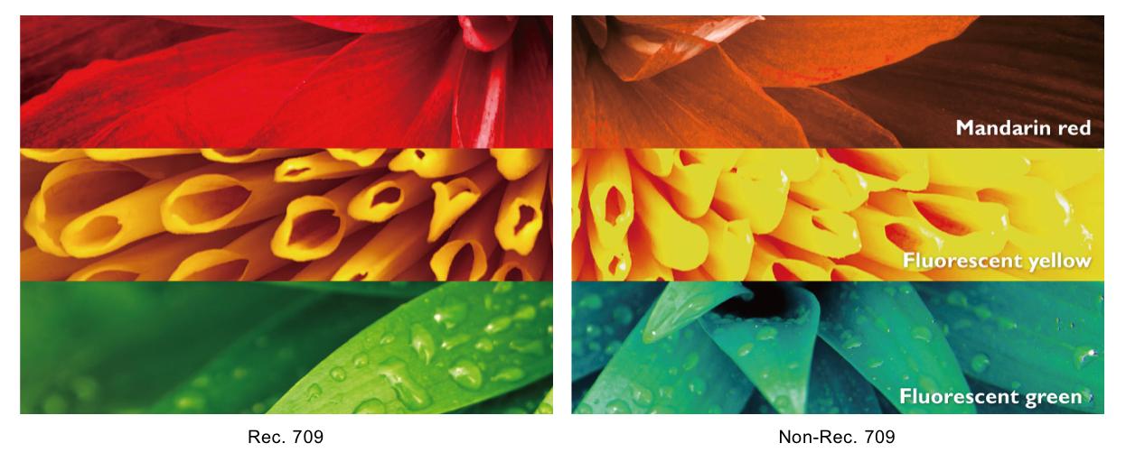 Fedeltà dei colori con la copertura del 100% della Rec. 709